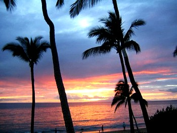 Dolphins Point Maui Vacation Suites On Kamaole I Beach Oceanfront South Kihei Near Wailea